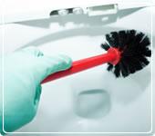 Housekeepers, housekeeper, housesitters, maids, housekeeping
